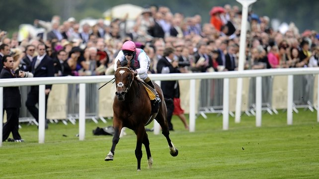 The mighty Frankel
