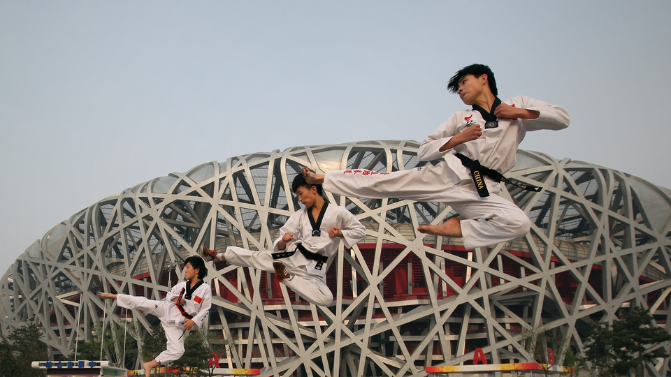 The Beijing Games was the 29th Olympic Games