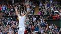 Murray wears down Ferrer to reach semi-finals