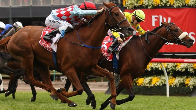 Dunaden (r) just got the better of Red Cadeaux in last year's race