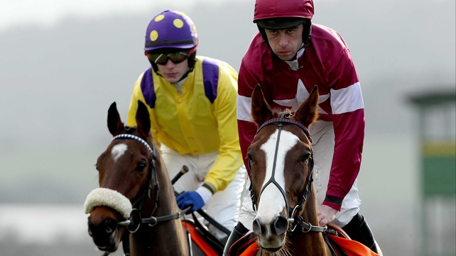 His Excellency (right) will miss out on Punchestown