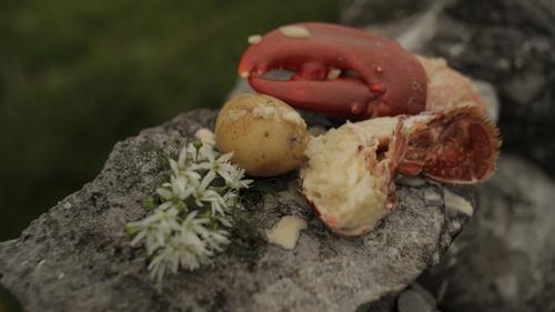 Martin Shanahan's Lobster and Whiskey Cream