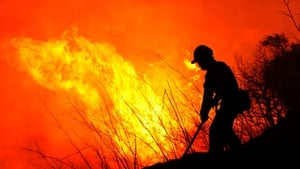 A firefighter tries to extinguish a wildfire in Ller, close to the Spanish-French border