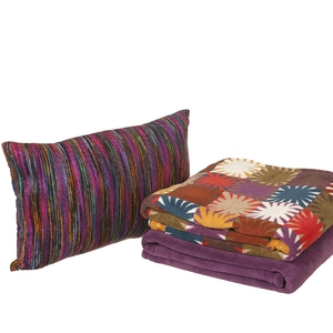 Penneys plum and patchwork cushion and microcosy €6 each (late summer)