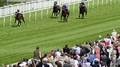Unbeaten Frankel saunters to Sussex Stakes victory