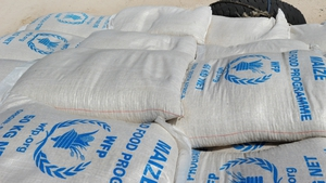 UN will give an initial ration of 400g of maize per day for 14 days