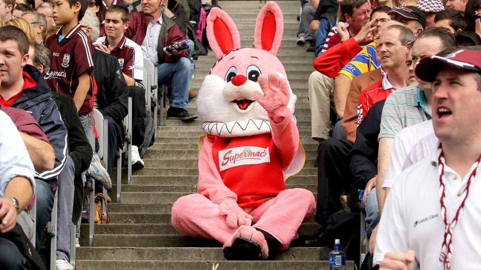 A pink rabbit was in attendance. But surely he was a safety hazard sitting on the steps?