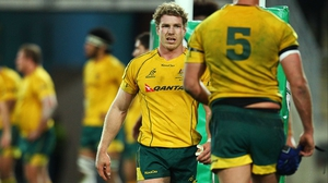 Australia captain David Pocock picked up a knee injury in Saturday's Rugby Championship opener against New Zealand