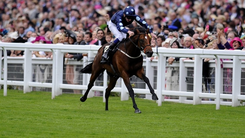 Reckless Abandon was last seen finishing in fifth place behind Sole Power in the King's Stand at Royal Ascot