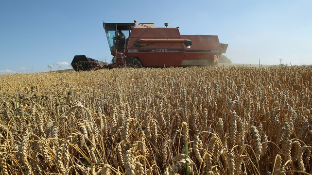 Droughts in the US and eastern Europe have pushed up world grain prices