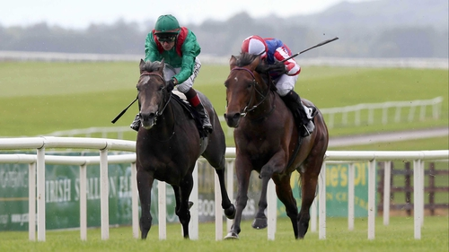Johnny Murtagh's retainer with the Aga Khan has been terminated less than a week after Ursa Major - a horse trained by Tommy Carmody from a yard owned by the leading rider - defeated the owner-breeder's Hartani in a Group race at the Curragh