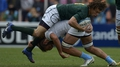 Springboks scramble draw with Pumas