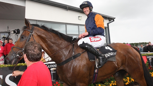 Rebel Fitz will aim to recover from defeat in Cork at Punchestown