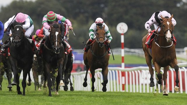 Bated Breath was beaten a nose in last year's Group 1 Haydock Sprint Cup. He will bid to go a place better next month