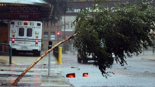 A tree is blown over outside Tulane Medical Center in New Orleans