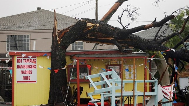 A tree toppled by Hurricane Isaac stretches across the roof of a food stand in Arabi, Louisiana