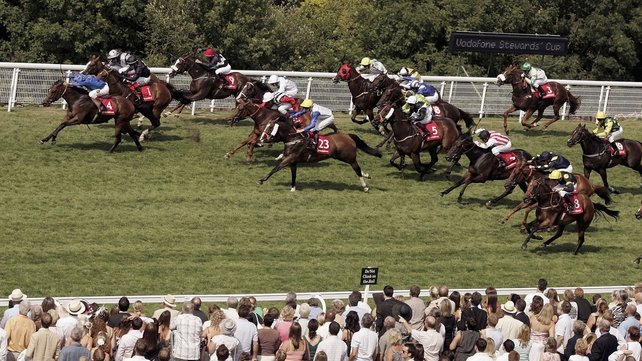 Borderlescott, seen here winning the 2006 Stewards' Cup at Goodwood, rolled back the years at Beverley