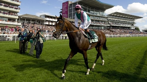 Could German Derby winner Pastorius be the first to lower the colours of the world highest rated horse, Frankel (pictured)?