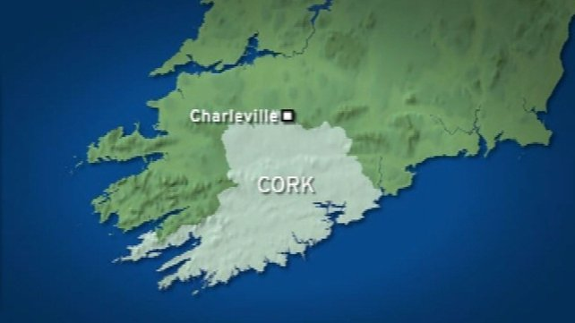 The boys' bodies were discovered in Charleville in North County Cork