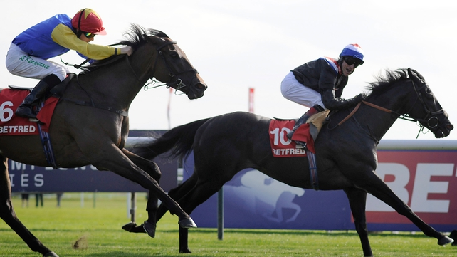 Society Rock pictured taking the Haydock Sprint Cup
