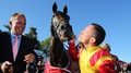 Snow Fairy shines in Irish Champion Stakes