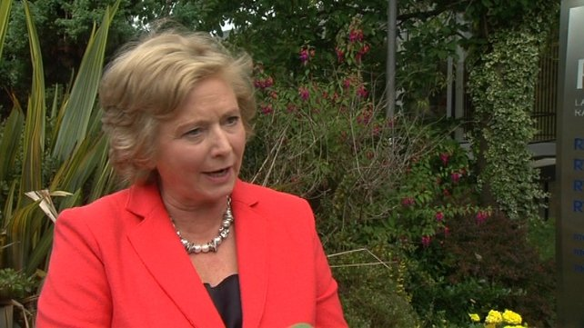 Minister Frances Fitzgerald rejected a former Supreme Court judge's suggestion that the referendum was unnecessary
