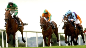 Carlingford Lough (L) is said to be in good shape after mid-season break