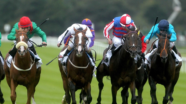 Royal Diamond prevailed in a tight finish to the 2012 Irish St Leger