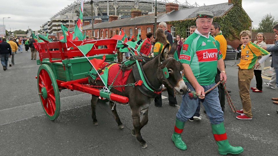 Mayo supporter Tom Farrell brought Daisy Brolly the donkey to Dublin for the occasion