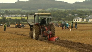 Over 300 competitors took part in the ploughing championships
