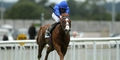 Dawn Approach to star in Dewhurst