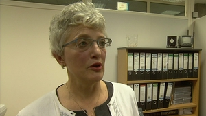 Katherine Zappone said the Seanad has not maximised the role envisaged for it in the Constitution