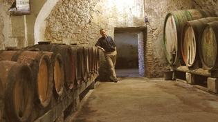 Giuseppe Rizzardi, winemaker