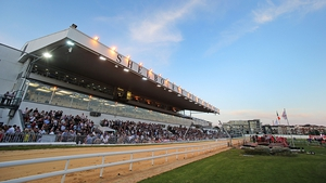 A bumper crowd is expected at Shelbourne Park