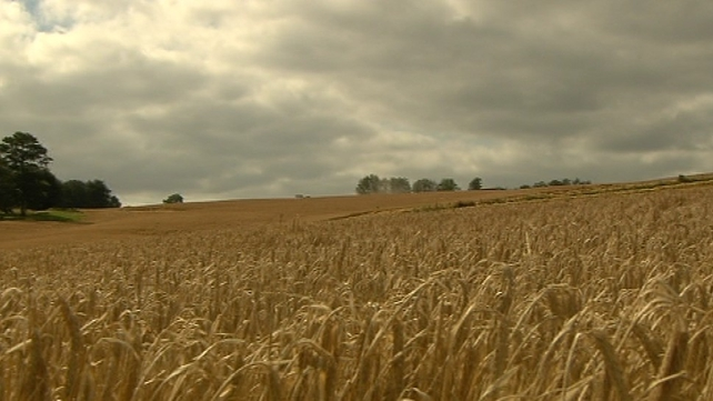 The report found that two-thirds of farmers said it was important for the farm to stay in family ownership