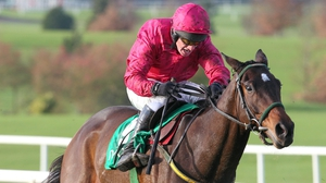 Monksland goes in the Clonmel Oil Chase