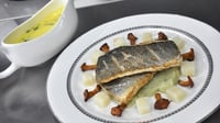 Pan-fried sea bass with fennel puree, chanterelles and celeriac and a tarragon sauce - A cook-off fish dish from MasterChef Ireland