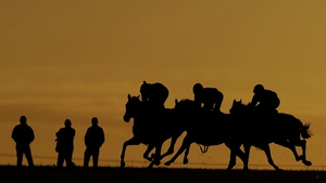 Horses are put through their paces in an early morning exercise on the gallops at Newmarket racecourse in England