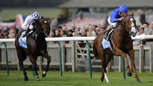Dawn Approach, who won the first race of the Flat season 12 months ago, is the clear favourite for this season's 2000 Guineas
