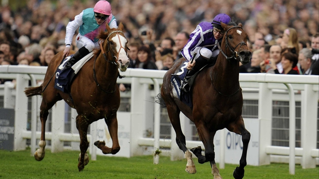 Excelebration was an impressive winner of the QEII on Champions Day at Ascot