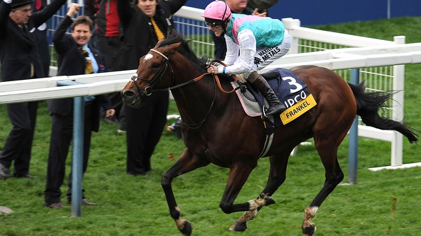 The first of Frankel's progeny will reach the racecourse in 2015