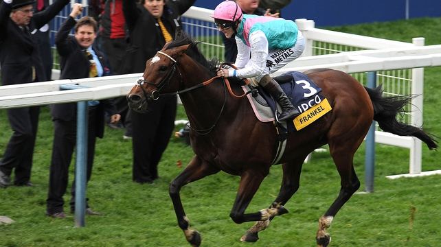 He's the most incredible horse we have ever seen, says Aidan O'Brien