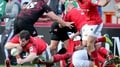 Penney: Bonus point could be crucial for Munster