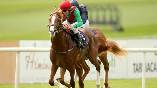 First Cornerstone was due to make his three-year-old debut at Leopardstown this afternoon