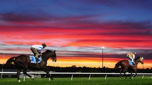 Jockey Corey Brown riding Rangirandoo and Hugh Bowman riding Shoot Out at Moonee Valley Racecourse