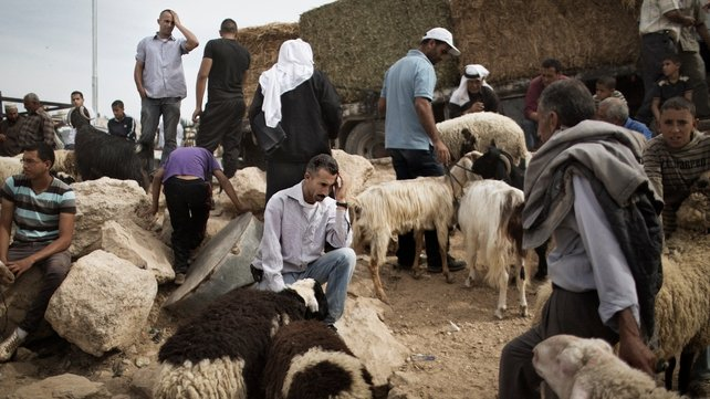Palestinians gather at a sheep market in Bethlehem ahead of the Muslim holiday of Eid al-Adha. Eid al-Adha or 'Feast of the Sacrifice', marks the end of the annual hajj or pilgrimage to Mecca