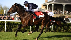 Aidan O'Brien last won the Racing Post Trophy with Kingsbarns in 2012