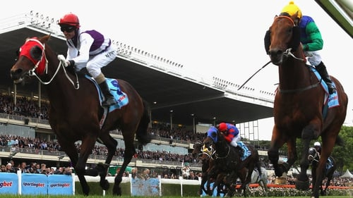 Ocean Park (left) with Glen Boss on board en route to the Cox Plate victory at Moonee Valley