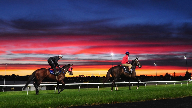 Ocean Park and jockey Glen Boss enjoy an early morning workout against an amazing sunrise backdrop at Moonee Valley
