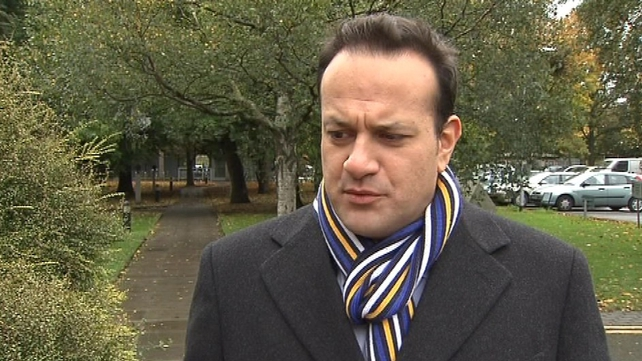 Leo Varadkar said he believed it was unlikely that €50m was spent solely on consultants